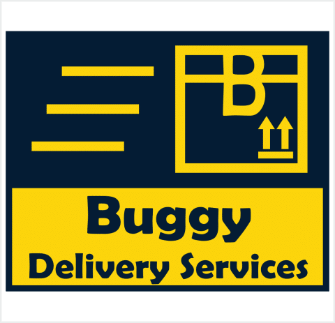 Buggy Delivery Services